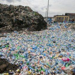 Buscan soluciones frente a daño ambiental por plásticos