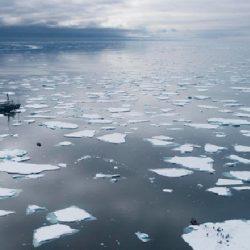 Por primera vez en la historia la Antártida supera los 20°