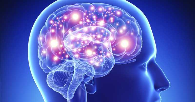 Descubren nuevas opciones terapéuticas para la esclerosis múltiple